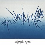 cyanotype -Michel Adnot - photographie numérique