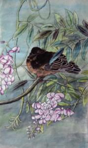 Oiseau sur Glycine - Peinture chinoise gongbi - Art Trégor