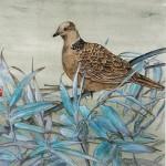 Tourterelle - Peinture chinoise gongbi - Art Trégor