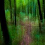 JY Le Pennec artiste photographe