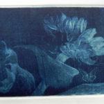 Tournesols 1: gravure manière noire cuve de 10x15cm de Maho