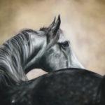 Emotion - Pastel sec - Art Trégor