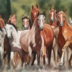 Troupeau chevaux en liberté - Pastel sec - Art Trégor